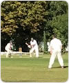Strollers vs I Don't Like Cricket, 15 September 2019